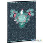 Pink Flamingo Vonalas Füzet A/4 4.Osztálytól (Ars Una, 93119405)
