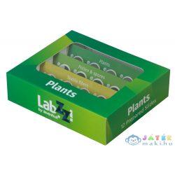 Levenhuk Labzz P12 Növények – Előkészített Tárgylemez-Készlet (Levenhuk , 72869)