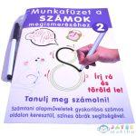 Számok Megismerése Gyakorló Munkafüzet - D-Toys (Magyar Gyártó, 505/02)