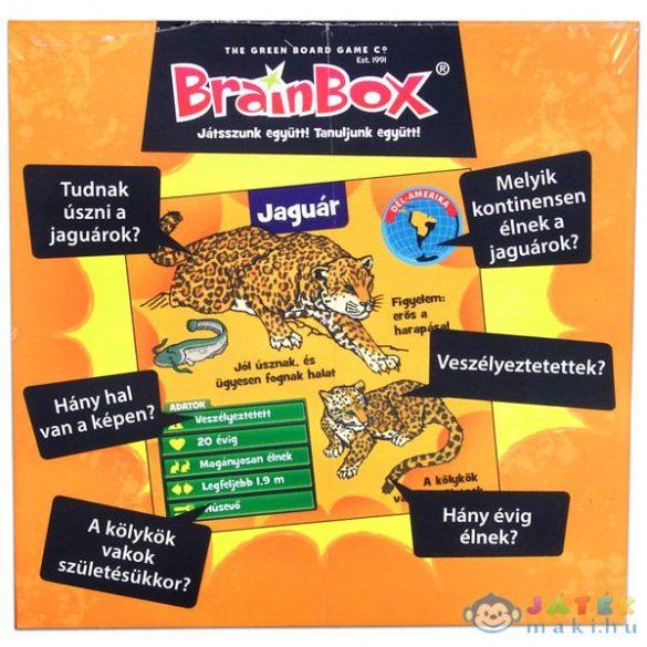 Brainbox -Állatok (Kensho, 93602)