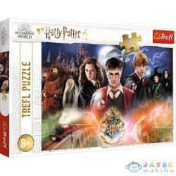 Trefl: Harry Potter Titka Puzzle - 300 Darabos (MH, 23001)