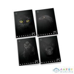 Pigna: Monocromo Black Vonalas Füzet - A4, 81-38, Többféle (Pátria, 386)